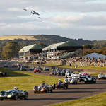 Alex Shore Revival | Goodwood